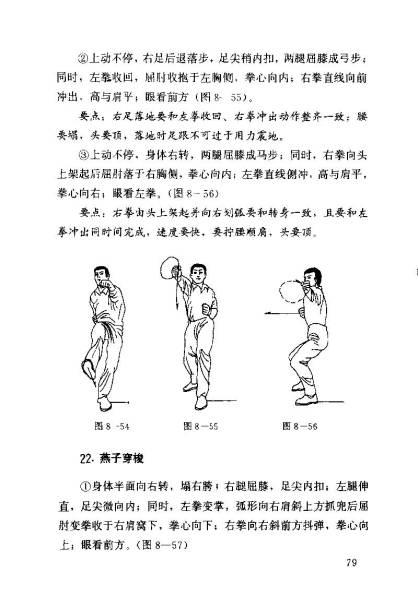 sheng_Page_087