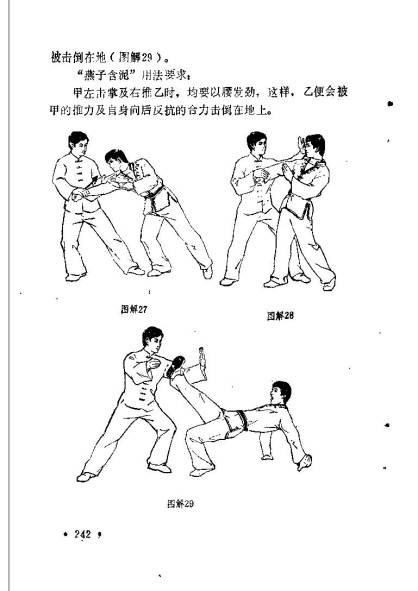 liuhebafa_Page_245