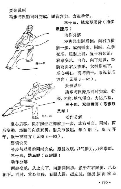 famous kung fu_Page_298