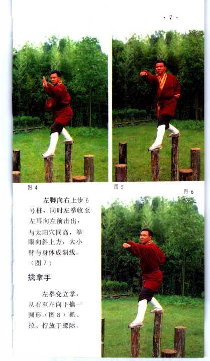 plum blossom pole_Page_12