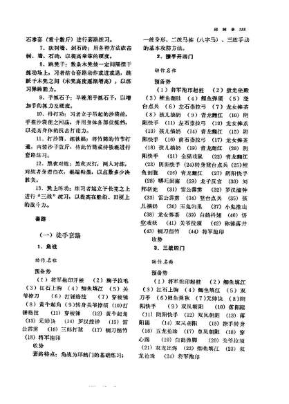 wushu overview_Page_390