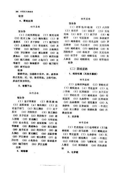 wushu overview_Page_391