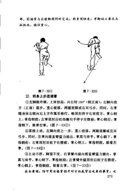 nanquan 1_Page_274
