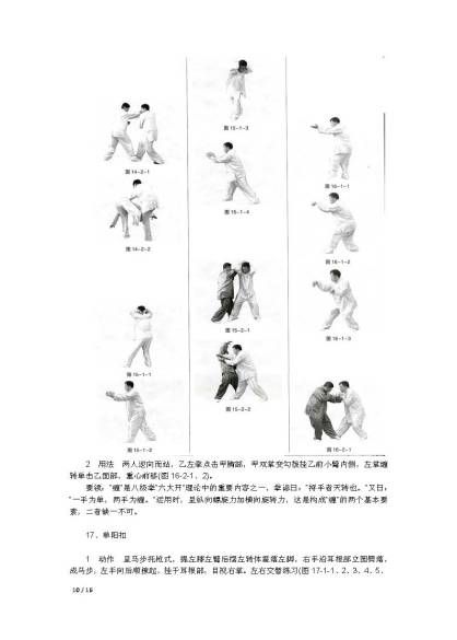 baji single techniques applications_Page_10